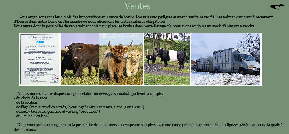Importation en france et vente de vaches highland cattle - Fumier de vache a vendre ...